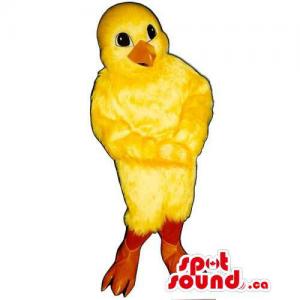 Customised Yellow Cute...