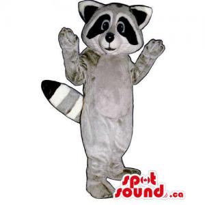 Customised Grey Raccoon...