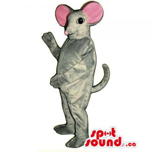 Customised Grey Mouse...