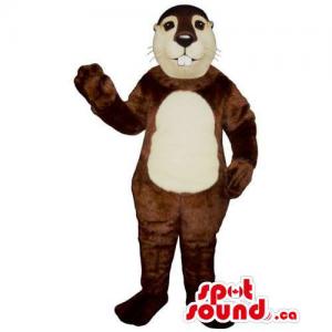 Customised Brown Chipmunk...