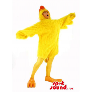 Cute Large Yellow Chicken...