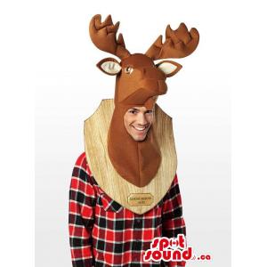 Real-Looking Deer Taxidermy...