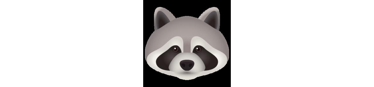 Mascots - SPOTSOUND CANADA -  Animal mascots of